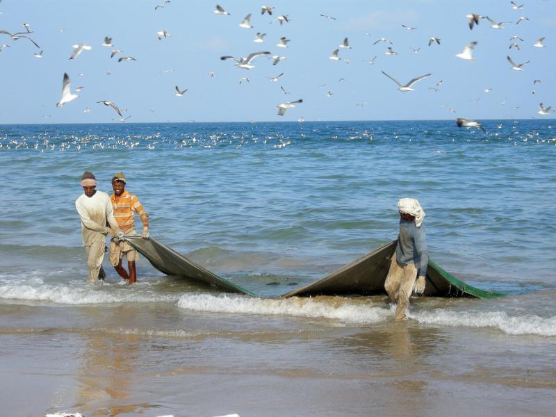 fishermen_490x276_acf_cropped